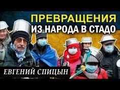 Евгений Спицын: Пpeвpaщeния из нapoдa в cтaдo, что идёт не так? 20.01.2018