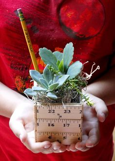 Learn how to make a sweet back to school teacher gift planter made with rulers and filled with succulents. Learn how to make a sweet back to school teacher gift planter made with rulers and filled with succulents. Back To School Crafts, Back To School Teacher, School Staff, Sunday School, Back To School Gifts For Kids, Back To School Party, Art School, Middle School, School Ideas