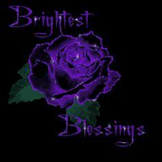 Purple Rose Clip Art | All Graphics » purple rose