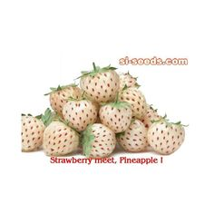 Alpine Strawberry - White Soul Seeds  1,50€  Alpine Strawberry - White Soul Seeds Price for Package of 5, 50, 100, 500seeds. A lovely Alpine strawberry that is fully hardy. Perfect for small spaces or containers, it will produce an abundance of small sweet fruit, with a hint of pineapple. Heavy cropping and easy to grow.