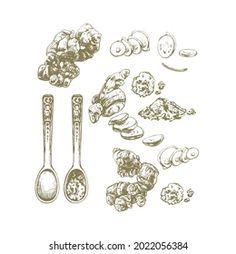 Vita L: портфолио стоковых фотографий и изображений | Shutterstock Stock Illustrations, Measuring Cups, Measuring Cup, Measuring Spoons