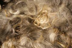 gray mohair fleece von EweDanceWool auf Etsy