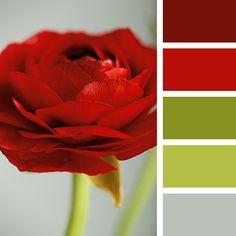 El color rojo incrementa el apetito, está relacionado a la pasión, es un estimulante para la energía y crea sensación de urgencia.   Por eso no es recomendable para el dormitorio de los niños
