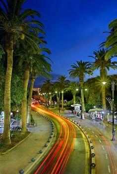 'Palm Trees Avenue - Kos island' by Hercules Milas Famous Landscape Paintings, Cool Landscapes, Kos, Landscape Stairs, Modern Landscape Design, Light Trails, Greece Islands, Winter Landscape, Palm Trees