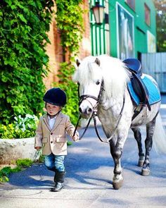 - Art Of Equitation Horse Photos, Horse Pictures, Horse Girl, Horse Love, All The Pretty Horses, Beautiful Horses, Poney Miniature, Animals And Pets, Cute Animals