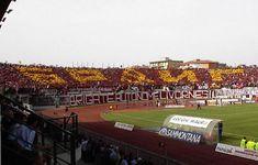 Livorno, coreografia ultras amaranto delle BAL Baseball Field, Sports, Hs Sports, Excercise, Sport, Exercise