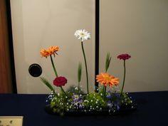 ella_saridi: kebana Ikenobo exhibition Tokyo Free stile