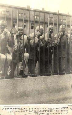 Mauthausen, Austria, Jews from Vienna Behind Bars