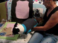 CAPA_PATRON_ROPA_PERRO_1_mascotas_собака одежда(360p).mp4 - YouTube