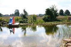 Swimming Pond Ready - Natural pool - Wikipedia, the free encyclopedia