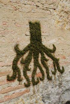 moss graffiti, sustainable advertising, green marketing, sustainable marketing