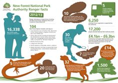 Information Graphic designed for the New Forest National Park Authority – Ranger Sponsorship