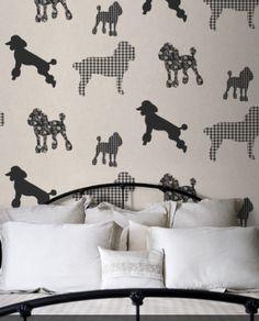 Poodle Wallpaper!