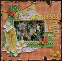 Narcisses - Scrapbook.com