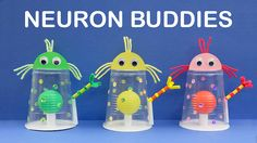 Growth Mindset, Art and Science Activity: How to Make Neuron Buddies - Step by Step. Mindset Ideas, Growth Mindset Vs. Fixed Mindset, Primary Growth Mindset, Growth Mindset For First Grade, Growth Mindset Activities First Grade, Growth Mindset Worksheets, Growth Mindset Teaching, Teach Growth Mindset, Growth Mindset Neurons, Growth Mindset Parents, Growth Mindset Activity, Growth Mindset Kindergarten, Human Growth, Neuroplasticity Activity, Neuroplasticity for Kids…