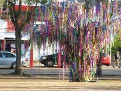 unless youve been to mardi gras you prob dont realize the beauty, festivity, and the effort stranger's put into making this Mardi Gras bead tree--one strand at a time.