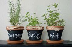 Maak een kruidentuin binnen - met leuke kruidenplantjes - ThePerfectYou.nl