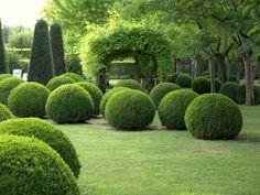 Décoration de jardin : adoptez l'art topiaire ! -