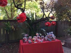 Lakhi's Elmo 2nd Birthday | CatchMyParty.com