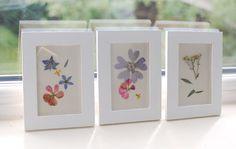 This Fashion Is Mine: DIY Framing Pressed Flowers