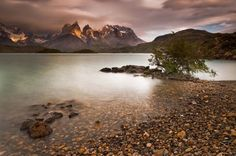 Guest Article – Patagonia, that legendary place . Torres Del Paine National Park, Geology, Patagonia, Chile, The Good Place, National Parks, Earth, Vacation, Explore