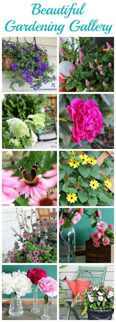 Over 50 gardening tips, projects and porch decorating ideas all in one place!