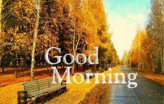Nice Pic Of Good Morning 14