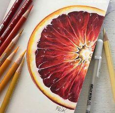 Fruit studies in guashe – A Level Art Sketchbook - Water Pencil Art Drawings, Cool Art Drawings, Realistic Drawings, Colorful Drawings, Art Sketches, Drawing Art, Drawing Ideas, Horse Drawings, Illustration Sketches