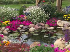 lovely little pond and great plantings