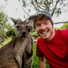 Animal whisperer: Allan Dixon is the master of animal selfies