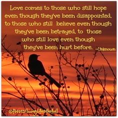 Love comes to those who still hope even though they've been disappointed, to those who still believe even though they've been betrayed, to those who still love even though they've been hurt before. ~ Unknown