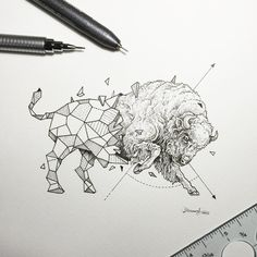 Geometric beasts bizon