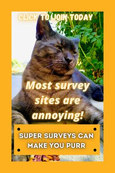We get it, survey sites can make your tail twitch. But Super Surveys is the cat's meow! Click to join today.