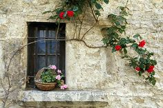 abriendo-puertas:    Rhone Alps and Beaujolais . By Tom Schillaci