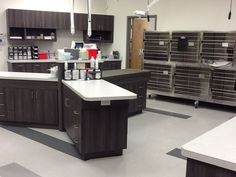 Veterinary Treatment Room with triplex island cabinet by #BlueFrog Design-Build Firm