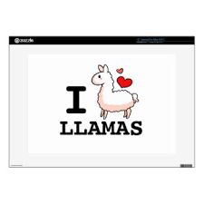 Image result for llama music