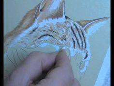 Cat Portrait in Pastel Pencils - Lesson 3