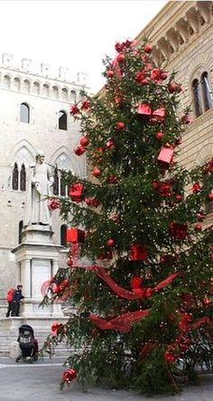 A Christmas tree in Siena, Italy. #siena #borgogrondaie