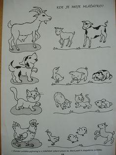 Pin by Tülos on Bauernhof Animal Worksheets, Printable Preschool Worksheets, Animal Activities, Worksheets For Kids, Preschool Education, Preschool Lessons, Preschool Activities, Teaching Kids, Kids Learning