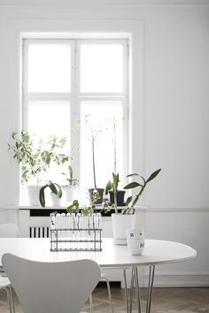 Greens inside of white - via Coco Lapine Design