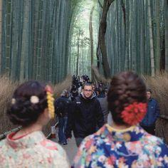 - - - Kyoto sightseeing - - - #autumn #snap #path #bamboo #grove #man #sightseeing  #kimono #kyoto #japan #mantaroq - by mantaroq