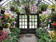 Orchid room at Longwood Gardens  It is so beautiful there!!!!!