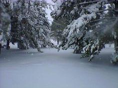 Blizzard 2012 Southern Illinois ...