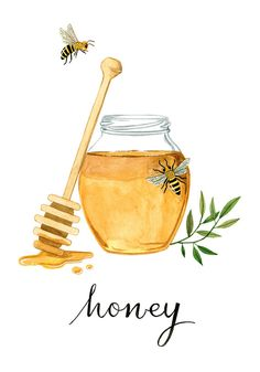 Honeybee Art Print Kitchen Art Kitchen Print by morningswithcoffee