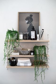 Curated display shelves, monochrome, simple, draping plants, beauty shelves
