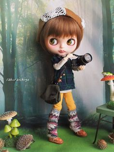 カスタムブライス * ルスカの森へ * の画像|sakuraichigo's diary