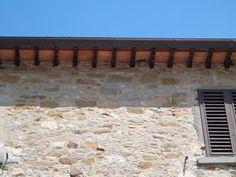 Castello Zonin - intakte Natur: Schwalbennester an der Burgmauer.