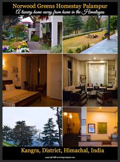 Norwood Greens Homestay , Palampur, Kangra Valley, Himachal Pradesh, India. a beautiful hill station located across the dhauladhar mountain ranges in the Himalayas. A luxurious stay option in Palampur. Head here for a homely experience and a peaceful vacation