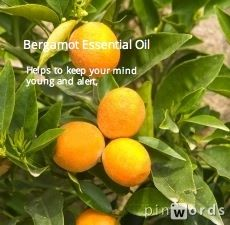 Bergamot essential oil. Click here for benefits. http://sunstoneholistichealth.com/collections/essential-oils/products/bergamot-essential-oil-30-ml