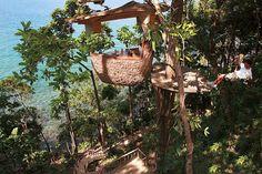 Bird's Nest Restaurant in Thailand
